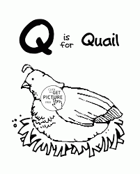 letter q alphabet coloring pages for kids letter q words