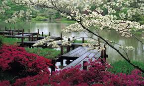 The Missouri Botanical Garden News Article Practicing Mindfulness At The Missouri Botanical