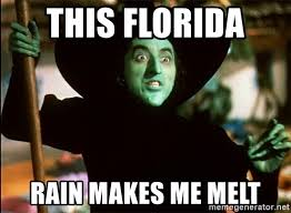 Florida Rain Meme - this florida rain makes me melt wicked witch meme generator