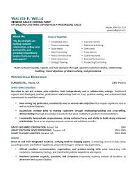Sample Senior Management Resume Senior Executive Resume Sample Job Resume Samples