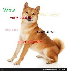 How To Make Doge Meme - buy doge now and get free doge t shirt by jams143 meme center