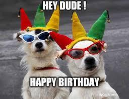 Birthday Dog Meme - funny happy birthday dog meme mycoolmemes