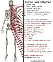 tattoo pain chart wrist lower back pain location chart back pain location chart tattoo