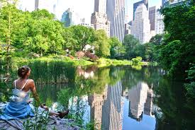 Map Central Park Central Park May 24 2014 Brooks Wheelan