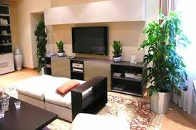 decor plants home add house plants to home decor to improve air quality