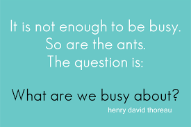 henry david thoreau thanksgiving quotes the art of being busy