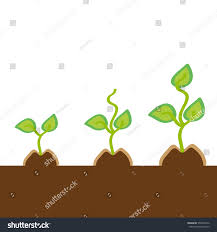 small plants on background vector stock vector 554026912