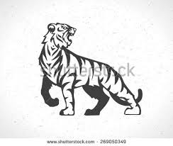 tiger logo stock images royalty free images vectors
