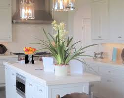 Kitchen Outstanding Kitchen Faucets For by Lighting Great Pendulum Lighting In Kitchen For Home Remodel