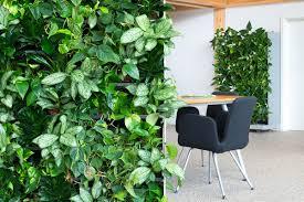nextgen room divider gallery nature u0027s green