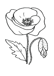 coloring pages remembrance day remembrance day coloring printables poppy and medals on war veteran