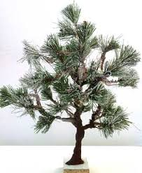 and how to make model evergreen trees and miniature