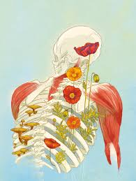 Google Maps Dead Body 4 Ways To Give Your Body Back To Nature After You Die By Jennifer