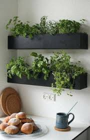 lights to grow herbs indoors growing herb garden indoors grow herbs indoors window planter grow