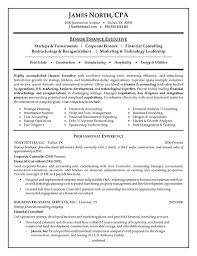 Sample Resume Of Cpa by Consultant Resume Example