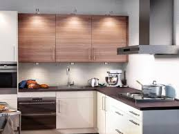 Ikea Kitchen Furniture Kitchen Furniture How To Paint Ikea Kitchen Cabinets Reviews Can