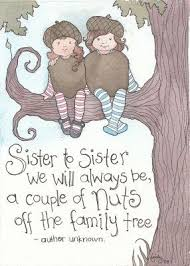 Happy Birthday Wishes To Big Best 25 Happy Birthday Sister Funny Ideas On Pinterest Funny