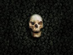 halloween skeletons wallpaper new skull photos view 888083 wallpapers risewlp