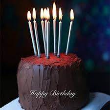 birthday candles astra gourmet 12 count metallic birthday candles