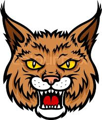 bobcat lynx vector mascot icon of wild cat or panther animal