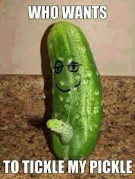 Tickle Memes - who wants to tickle my pickle