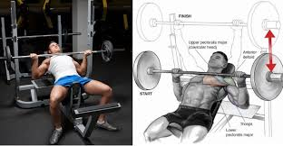 Will Incline Bench Increase Flat Bench Incline Bench Press Vs Reverse Grip Bench Press Fitness And Power