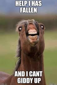 Meh Face Meme - horse face memes imgflip