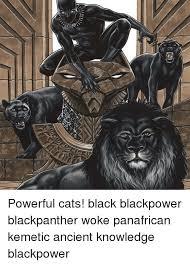 Black Power Memes - d powerful cats black blackpower blackpanther woke panafrican