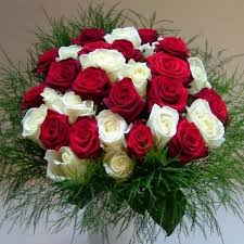 send roses online 20 best send roses online to india images on send