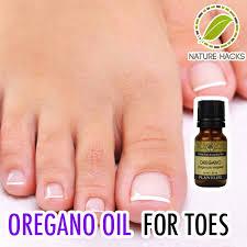 oregano oil clears up toenail fungus