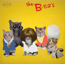 cat photo album check out how cats recreate classic album covers cat questions