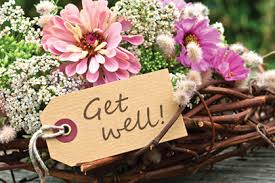 get well soon flowers get well soon flowers canine chronicle