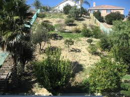 Landscaping Ideas Hillside Backyard Landscape Ideas For Steep Backyard Hill The Garden Inspirations