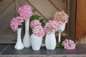 Cheap Glass Vase Better Housekeeper Blog All Things Cleaning Gardening Cooking
