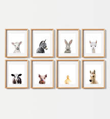 farm animal prints set of 8 baby animals the crown prints