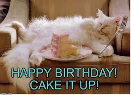 Happy Birthday Cat Memes - birthday fat cat meme generator imgflip