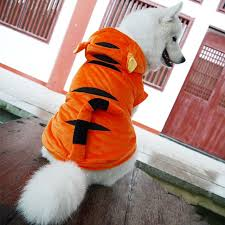 Big Dog Halloween Costume Aliexpress Buy Halloween Pet Cat Dog Tiger Costume Clothing