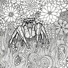 wings scales artwork u0026 tales free spider coloring book