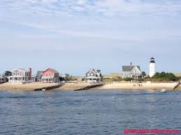 Whale Watches Cape Cod - 23 best whale watching in cape cod images on pinterest cape cod