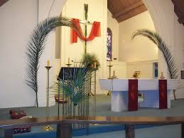 palm for palm sunday palm sunday a year of flowers