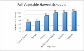 Florida Vegetable Gardening Guide by 10 Best Fall Garden Plants To Grow Fall Gardening Guide