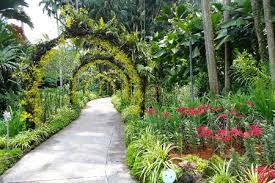 Singapore Botanic Gardens Location Singapore Botanic Gardens Shore Excursions Asia