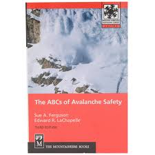 Icy Avalanche Disaster Management Is A Science Nina U0027s Soap Bubble Box