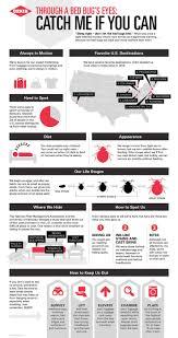 31 best infographics images on pinterest pest control