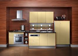 Kitchen Cabinets Plywood by Contemporary Style Plywood Kitchen Cabinets With Carcass Lacquer Door