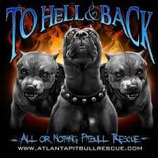 american pitbull terrier t shirts all or nothing pitbull rescue