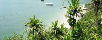 Cateracterum Palm by Cat Ba Island Explorer 3 Days 2 Nights Zambaka