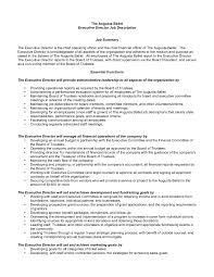 resume sle templates executiver description template executive director resume sle