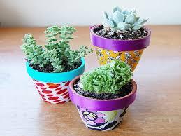 Unique Plant Pots Download Unique Plant Pots Illuminazioneled Net