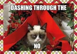 cat christmas 12 days of grumpy cat christmas